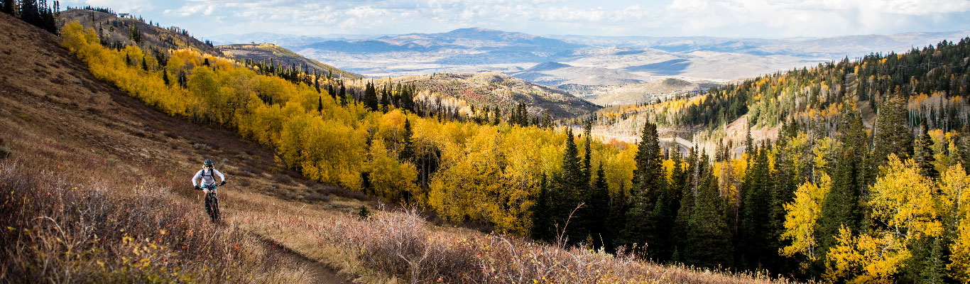 Epic Mountain Biking Tours from White Pine Touring in Park City, UT