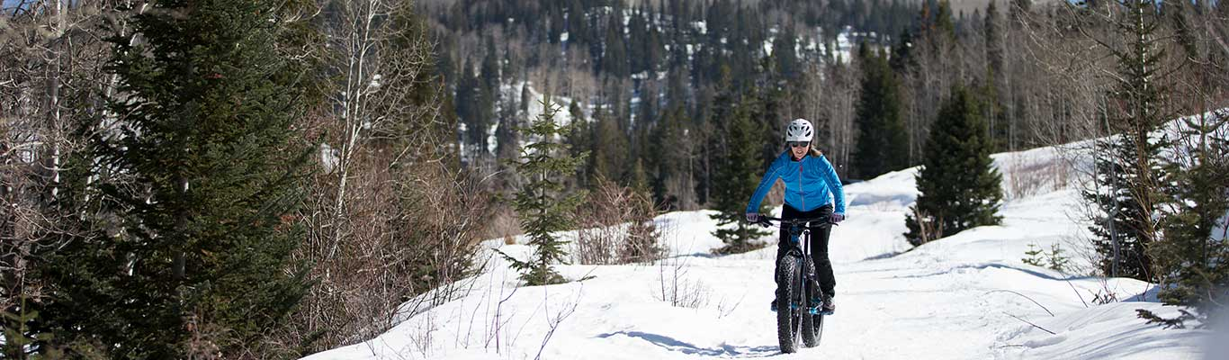 Fat Biking Tour from White Pine Touring in Park City, UT