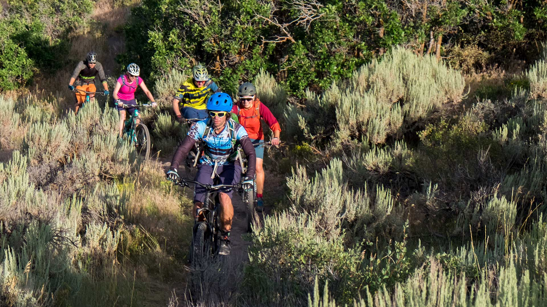 Free Thursday Night Mountain Biking Group Ride from White Pine Touring in Park City, UT.