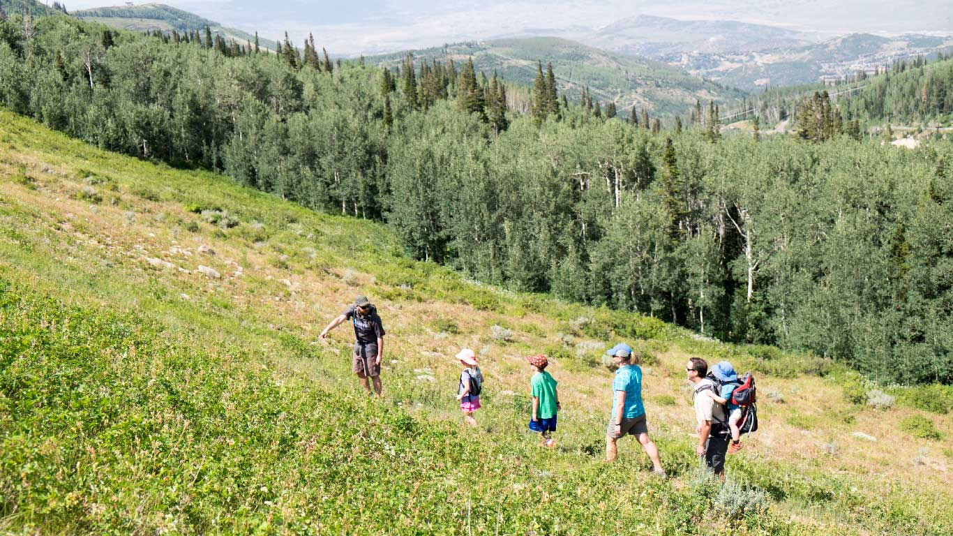 Guided Local Hiking Tours from White Pine Touring in Park City, UT.