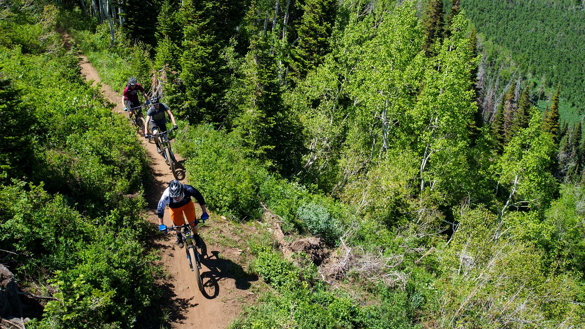 Guided Local Mountain Biking Tour from White Pine Touring in Park City, UT.