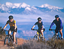 Guided Mountain Biking