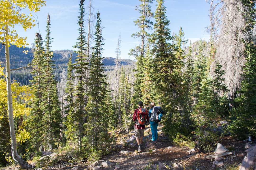 Views Hiking to the White Pine Touring Uinta Mountains Yurt